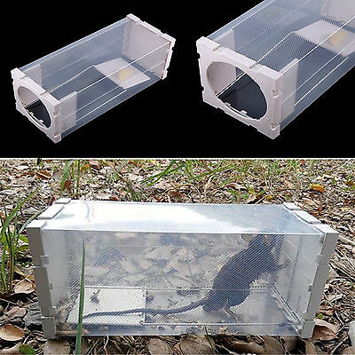 White Humane Rat Trap Cage Animal Pest Rodent Mice Mouse Bait Catch Capture HG