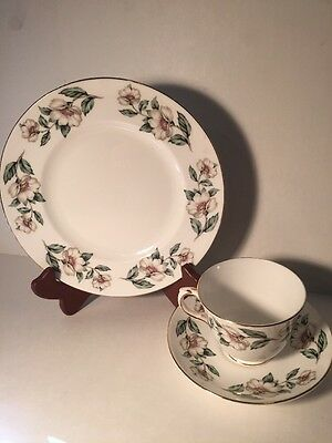 Royal Staffordshire Footed Teacup/saucer And Plate Pear Blossom Pattern