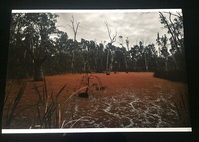 Murray river photograph print - black&white/colour A2