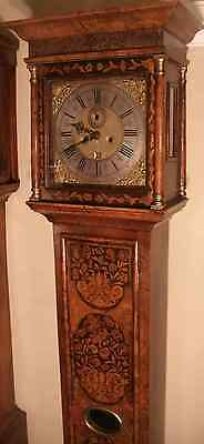 Antique Slim Walnut Floral   Marquetry   Longcase / Grandfather Clock