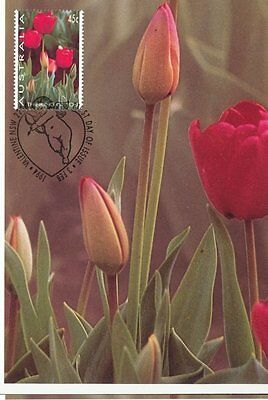 """Valentine's Day, Thinking of You """"Tulips"""" - Maxi Card Maximum Card 1994"""
