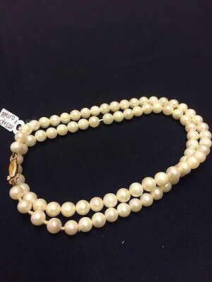 16 inch Cultured White Pearl String with 14 ct Yellow Gold Fastenings