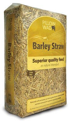 Pillow Wad Barley Straw (2kg x 3 pack)