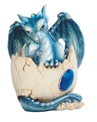 September BIRTHSTONE DRAGON Baby in Shell Figure Statue Home decor