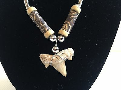 Genuine Fossil Shark Tooth Necklace