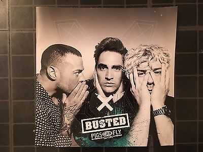 Busted Pigs Can Fly Tour Programme