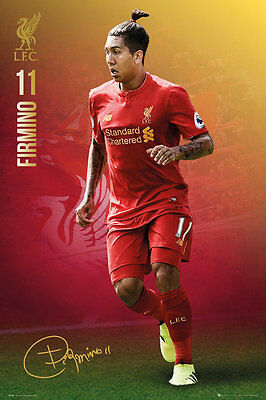 Liverpool FC Poster - FIRMINO 16/17 - New LIVERPOOL Football poster SP1395