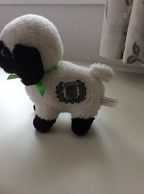 Soft toy sheep. Heather gift company.