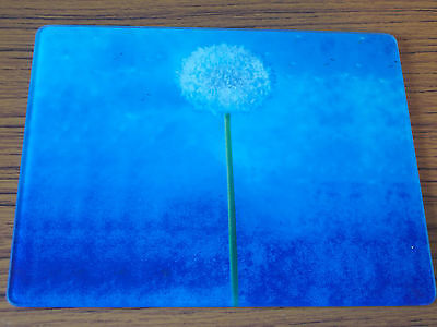 2 x Beautiful Blue Dandelion Clock Glass Placemats