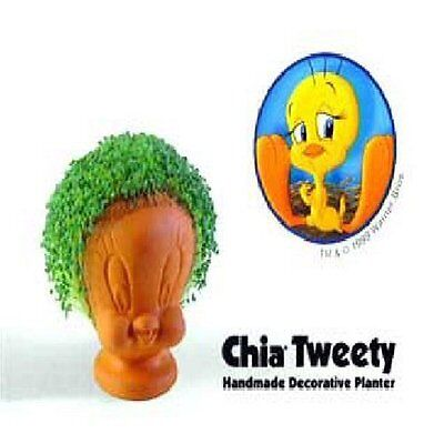 Chia Tweety Planter