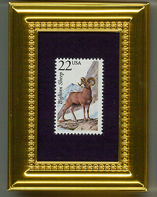 Bighorn Sheep  A Collectible Glass Framed Postage Masterpiece!