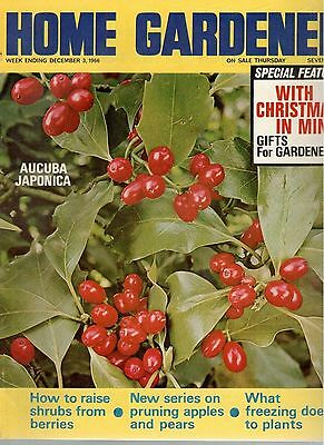 1966 3 DECEMBER 37867 Home Gardener Magazine  WHAT FREEZING DOES TO PLANTS