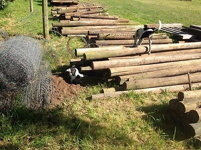 Wooden Fence Posts, Farm Fencing, Lots of 10, 250 Available