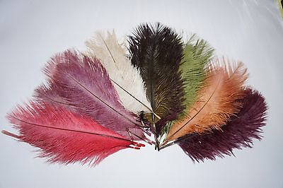 Fly Tying, Emu Plumes 7 Colors