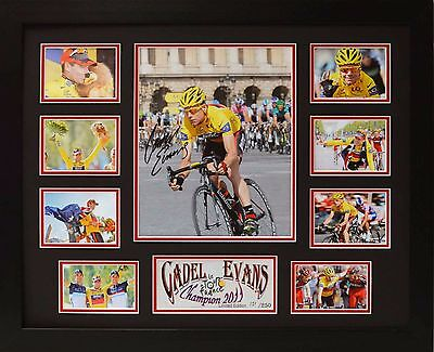 Cadel Evans Limited Edition Framed Signed Memorabilia