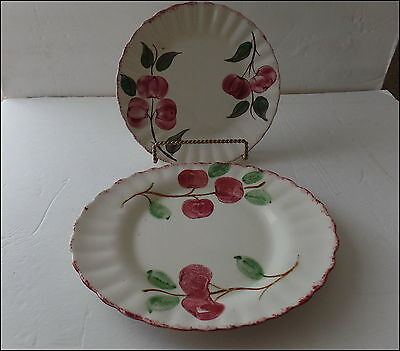 """Blue Ridge Southern Pottery Crab Apple Colonial 9.5"""" Plate & 11"""" Platter"""