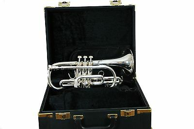 Sternberg Cornet Bb  30SCN3423 (Made In Europe)