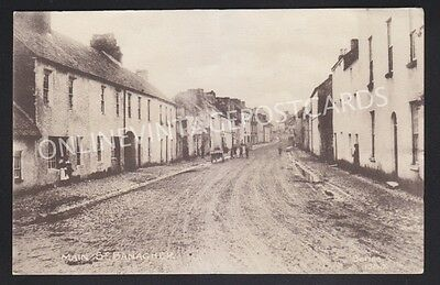 Co Offaly Main Street Banagher