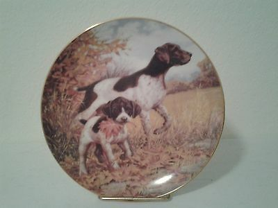 German Shorthaired Pointer Plate Collectible