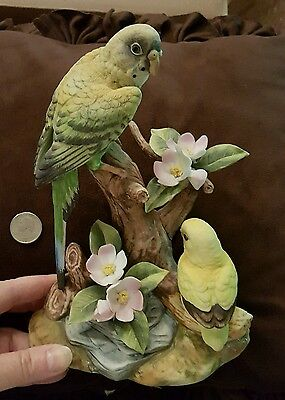 PARAKEET by Andrea Sadek. Excellent Condition Yellows and Greens BEAUTIFUL