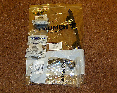 Triumph Speed Triple,Sprint RS/ST cam chain and tensioner kit. New.
