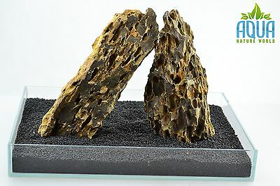 (A-5412)  ADA Dragon Stone Aquascaping Aquarium Iwagumi Style