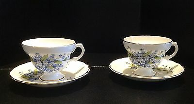 Rosina England Bone China Tea Cup And Saucer Blue Flowers Set of two