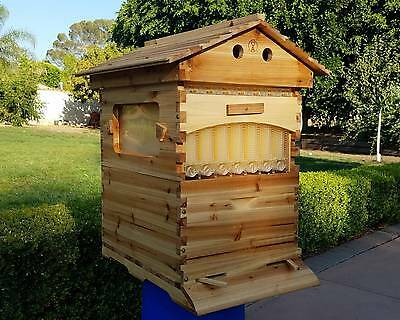 Complete bee hive with  honey flow frames automatic shiping worldwide!