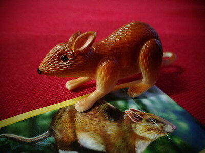 Yowies Series 9 FORGOTTEN FRIENDS B * # 23, WHITE FOOTED RABBIT RAT + PAPERS