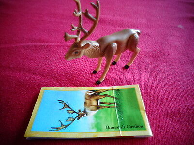 Yowies Series 9 FORGOTTEN FRIENDS B * # 10, DAWSON'S CARIBOU + PAPERS