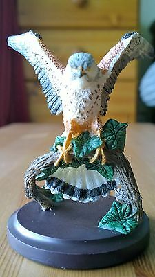 The Country Bird Collection - The Kestrel Figurine/Ornament