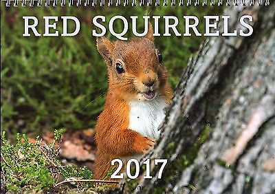 Red Squirrels 2017 Calendar - Lake District - Charity Fundraising