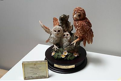 ***RARE*** Country Artists Owls Herald Of Spring by David Ivey LIMITED EDITION