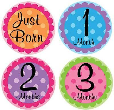 M5 Belly Doodles 16 baby month milestone stickers for girls Polka Dots