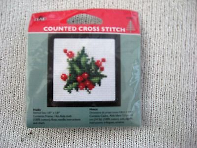 Counted Cross Stitch Christmas Mini Kit with Frame - Holly (14 Count)