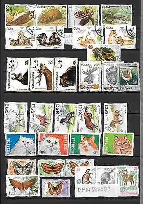 Wild Animals Mixture Collection Used Good and very good #