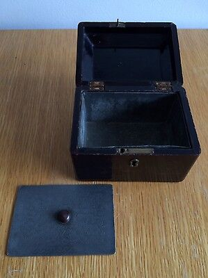 19th Century Chinese Lacquer Tea Caddy. Landscapes. original pewter Inside.