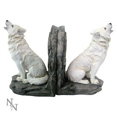 ' Wardens Of The North '  Bookends   -   Nemesis Now  -  Bnib