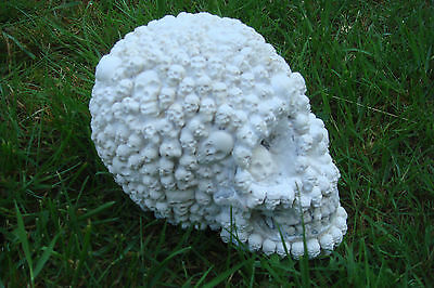 NEW design LATEX MOULD MOLD  SKULL with tiny skulls all over -- M