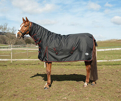 Rhinegold Aspen Combo Heavyweight Turnout Rug