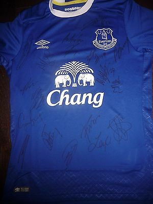 Everton Fc Toffees Squad Hand Signed Official Shirt Signed By 18