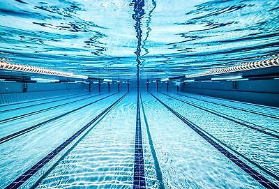 Swim Schools - Get A Website For Your Business Here 249.99  - Lifetime Support