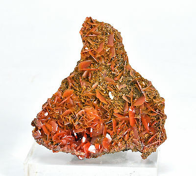 Wulfenite - Bright Crystals from China