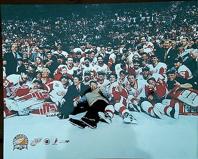 2001-2002 Detroit Red Wings Stanley Cup Champs 16x20 photo