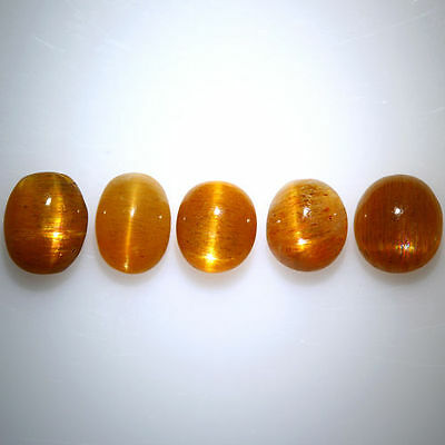 6.930 Cts 100% NATURAL UNTREATED UNHEATED GOLDEN RED SUNSTONE CAT'S EYE 5-PCS!!