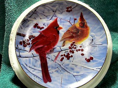 Cardinals for all Seasons Scarlet in Winter Plate Bob Travers The Danbury Mint