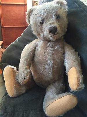 """Rare Antique Steiff Bing ? Teddy Bear 1905 Hunchback Character 13"""" See His Story"""