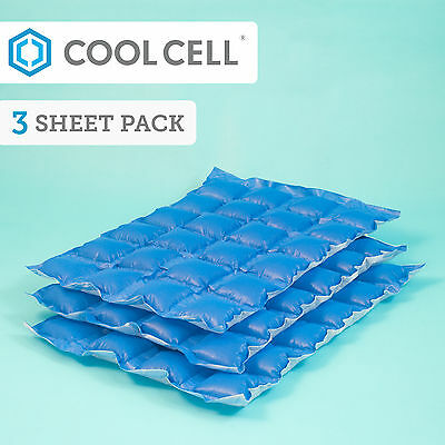 CoolCell Ice Packs x 3 Amazing Non-Melt Cool Bag & CoolBox Festivals BBQ Camping