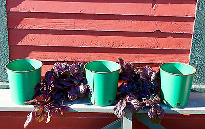 3 Vintage Green Pressed Tin or Steel Nursery Plant Containers