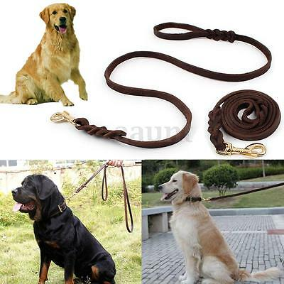 2m Long Leather Braided Pet Dog Walk Traction Collar Strap Training Leash Lead